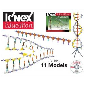 K'Nex Dna Replication & Transcription