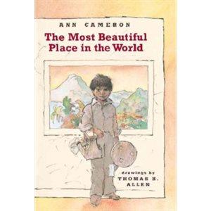 Jennifer Serravallo Go To Books Grade 4 15 Books