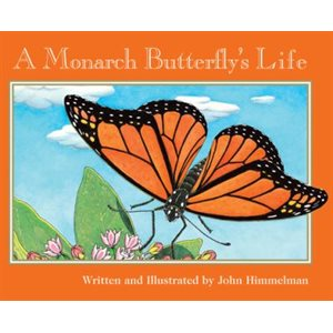 A Monarch Butterfly's Life