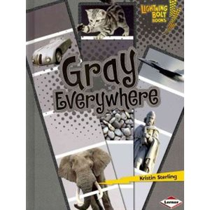 Gray Everywhere