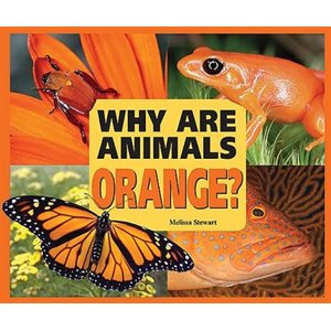 Why Are Animals Orange?