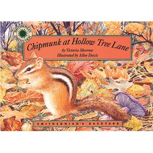Chipmunk at Hollow Tree