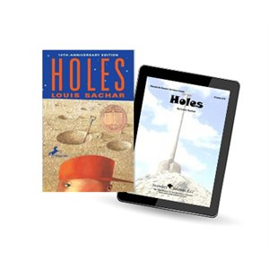eTeacher Collection: Holes (3 bk set)