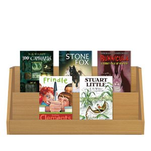 Grade 4 Favorites (10 Bk Set)