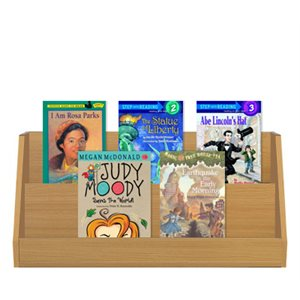 Grade 4 High Interest, Low Readability (10 Bk Set)