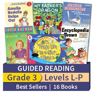 Guided Reading Collection: Grade 3 Best Sellers (16 books)