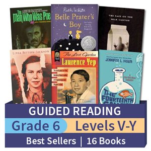 Guided Reading Collection: Grade 6 Best Sellers (16 books)