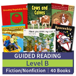 Guided Reading Collection: Level B Fiction and Nonfiction Combo (40 books)