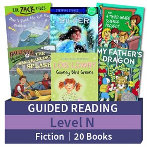 Guided Reading Collection: Level N Fiction (20 books)