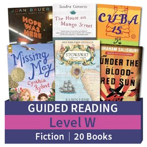 Guided Reading Collection: Level W Fiction (20 books)