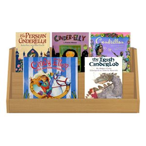 Cinderella Stories From Around the World (6 Books)