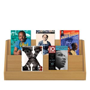 African American Biographies (7 Books)