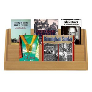 Civil Rights (10 Books)