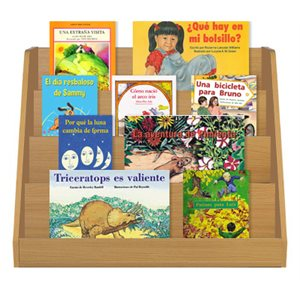 Reading Recovery Spanish - Expanded Classroom Multi-Level Collection  (100 bk set)