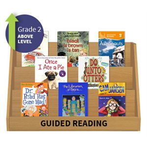 Guided Reading Collection: Grade 2 Above Level (20 Books)