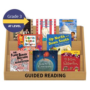 Guided Reading Collection: Grade 3 At Level (20 Books)