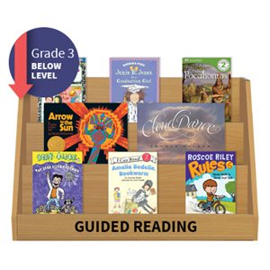 Guided Reading Collection: Grade 3 Below Level (20 Books)