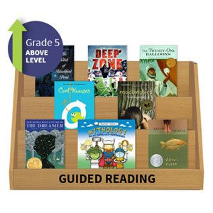 Guided Reading Collection: Grade 5 Above Level (20 Books)