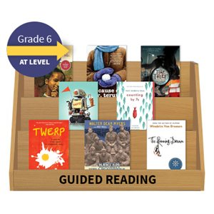 Guided Reading Collection: Grade 6 At Level (20 Books)
