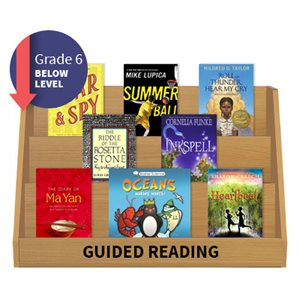 Guided Reading Collection: Grade 6 Below Level (20 Books)
