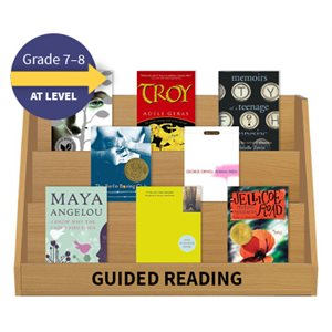 Guided Reading Collection: Grade 7 / 8 At Level (20 Books)