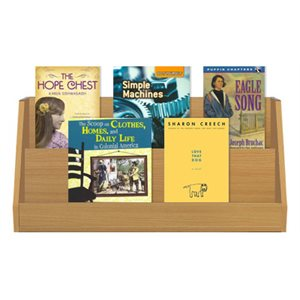 Engage NY EL Grade 4 Complete Classroom Collection (225 Books)