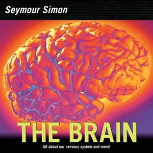 The Brain Our Nervous System