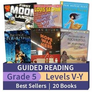 Guided Reading Collection: Grade 5 Best Sellers (20 books)