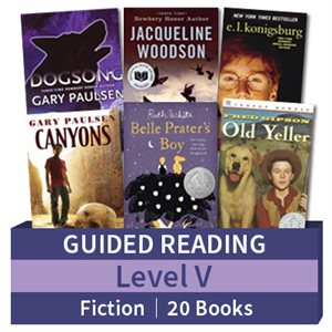Guided Reading Collection: Level V Fiction (20 books)