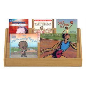 African American Biographies (6 Books)