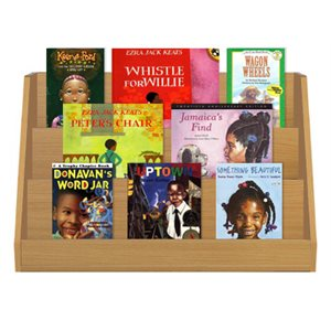 African American Stories (10 Books)