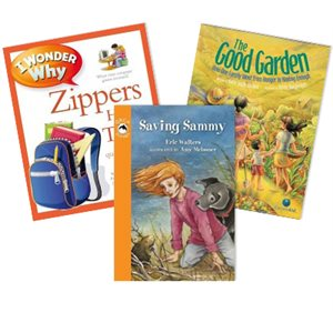 Journeys Grade 3 Unit 3- Lessons Learned (6 Books)