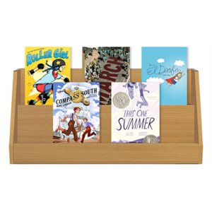 New & Acclaimed Graphic Novels