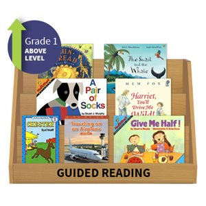 Guided Reading Collection: Grade 1 Above Level (20 Books)