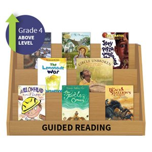 Guided Reading Collection: Grade 4 Above Level (20 Books)