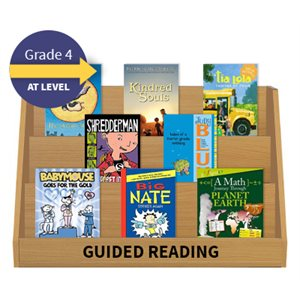 Guided Reading Collection: Grade 4 At Level (20 Books)