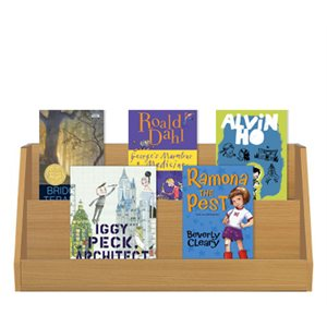 2-3 Read Alouds (10 books)